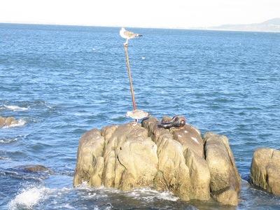 Muelle de Dalkey