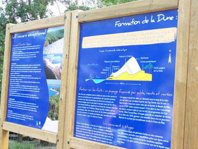 Informacion duna