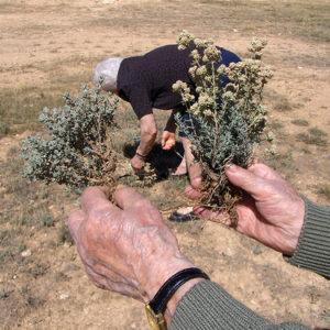 Matarraña: El buen yantar en tierras de secano