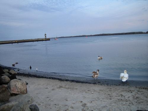 El río Trave en su desembocadura en el Mar Báltico