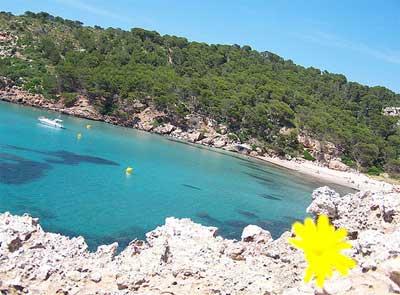 Menorca playa Algaiarens