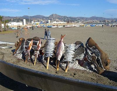 Espeto de sardinas en Malaga
