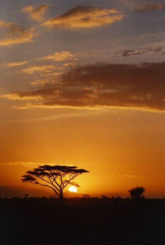 Puesta de sol en el Serengeti