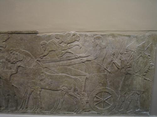 Asurbanipal cazando leones, en el Museo Británico de Londres (y V)