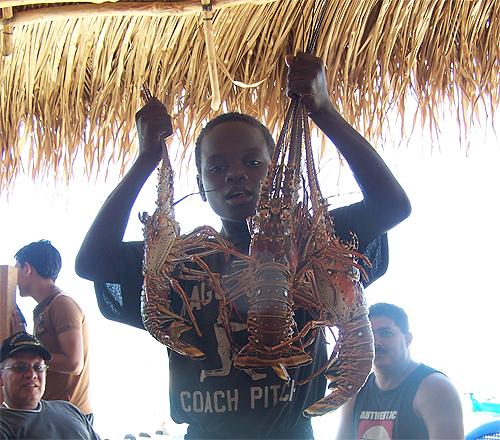 Langostas en Cayo Cochinos