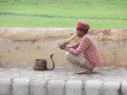 Encantador de serpientes en la India