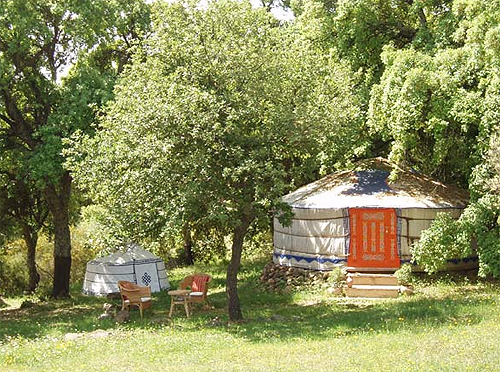 Yurta Mongol entre olivares