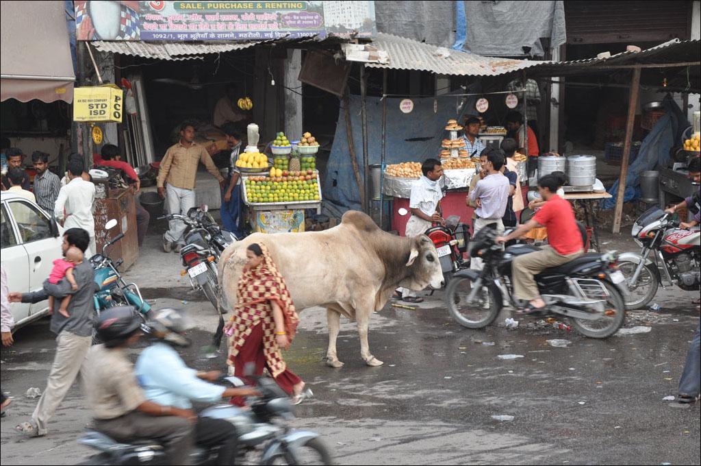Calle de la India @xavierverdaguer.com