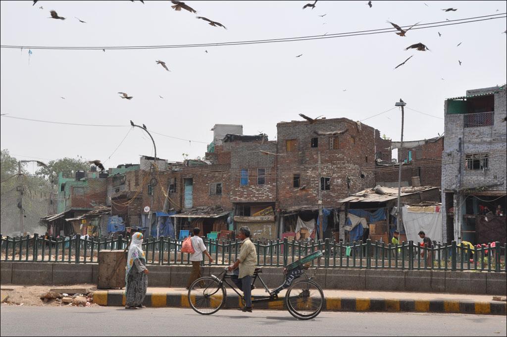 Retrato de la India @xavierverdaguer.com