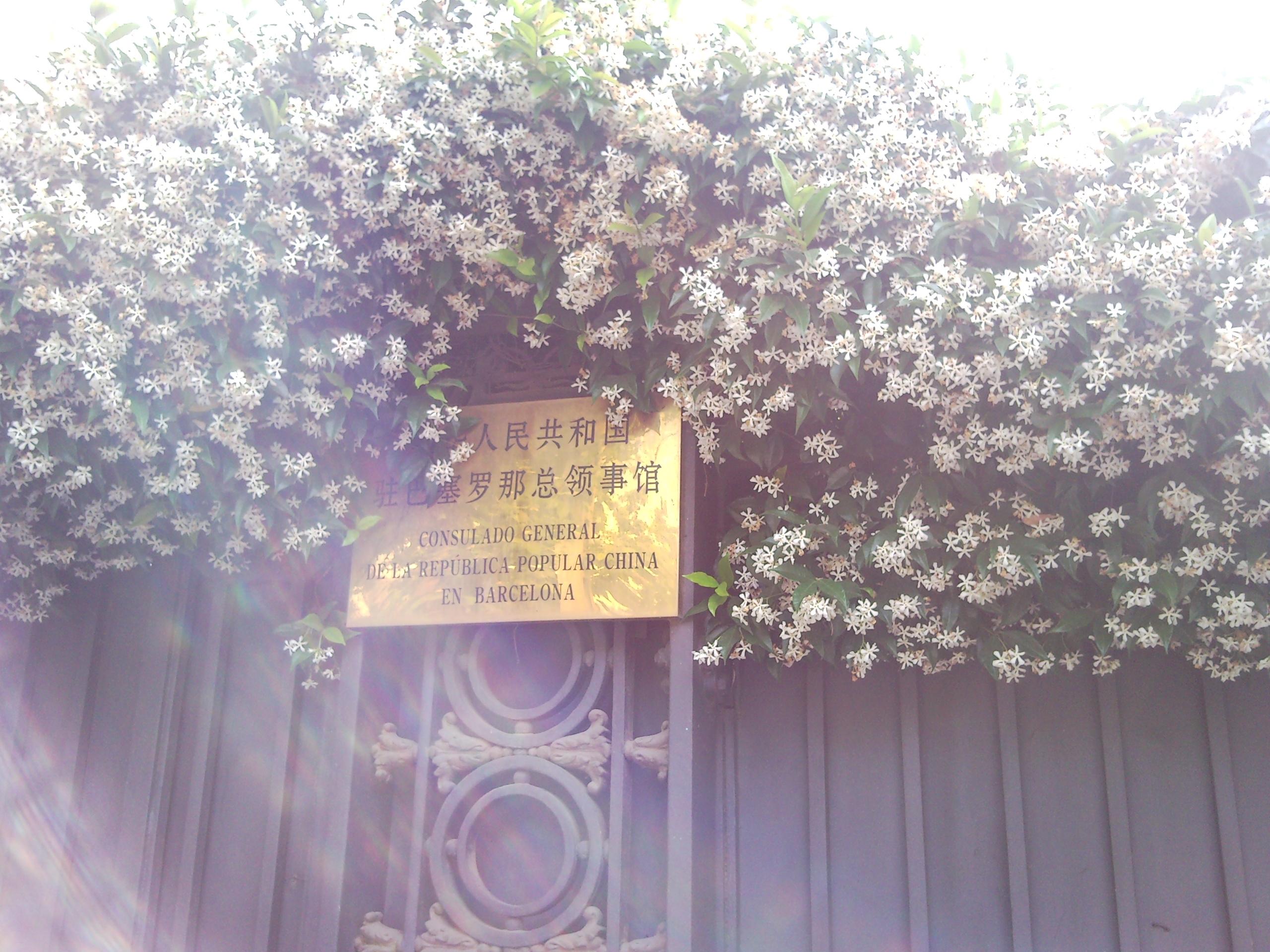Consulado de China en Barcelona
