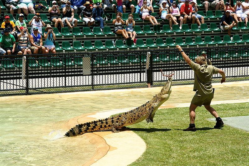Steve Irwin, el mítico cazador de cocodrilos de Australia