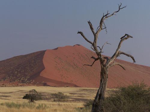 Duna roja de Namibia