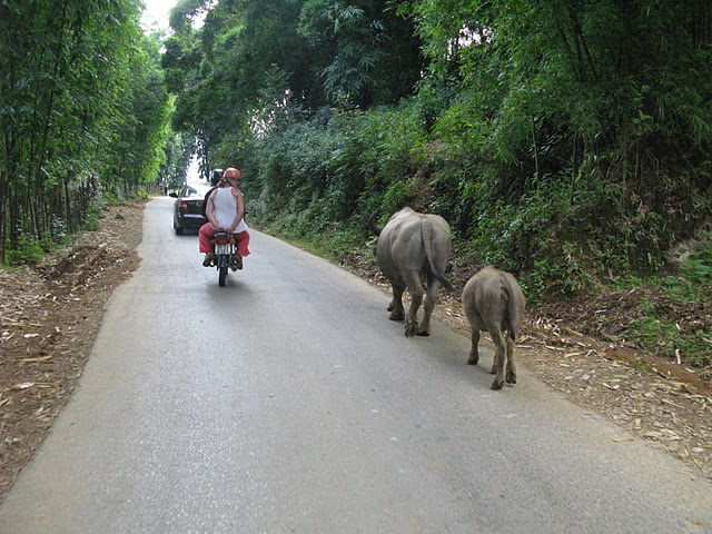Volviendo en moto del trecking a Sapa