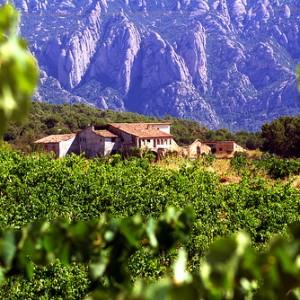 Ruta de vinos por Catalunya