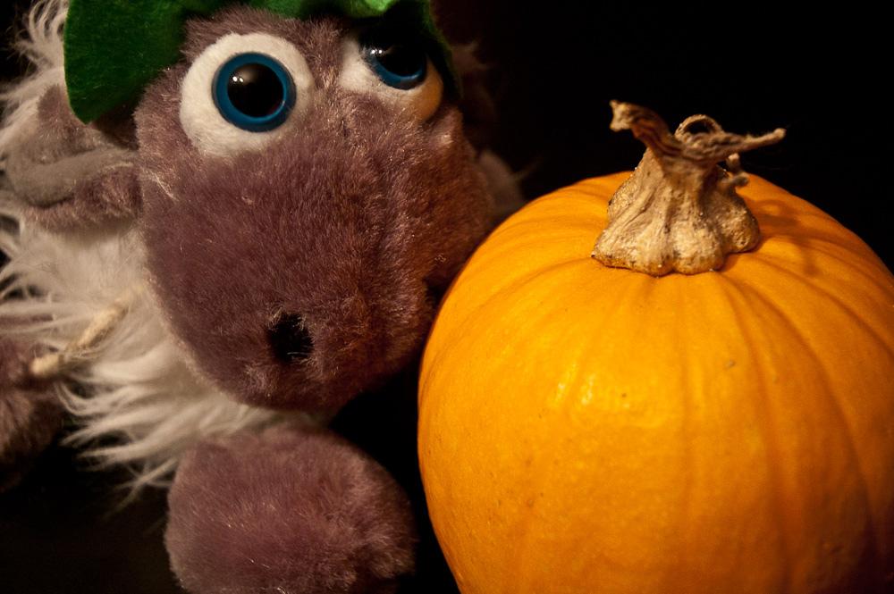 Halloween se inventó en Irlanda @Jesús de Fotonazos