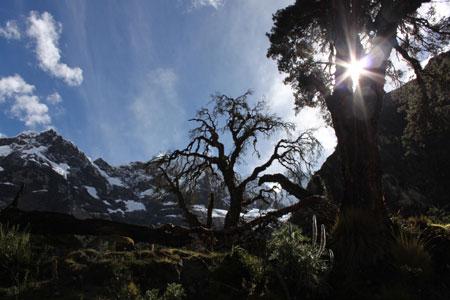 Trekking en la Cordillera Blanca @3viajes