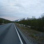 Renos cruzando la carretera de camino al Cabo Norte