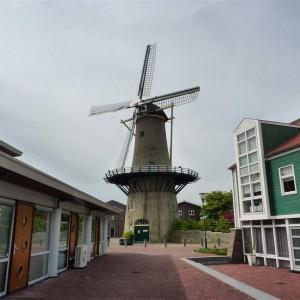 Los molinos de Kinderdijk