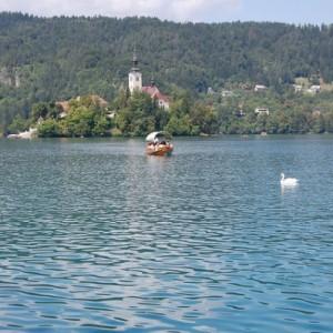 Un baño en el Lago Bled
