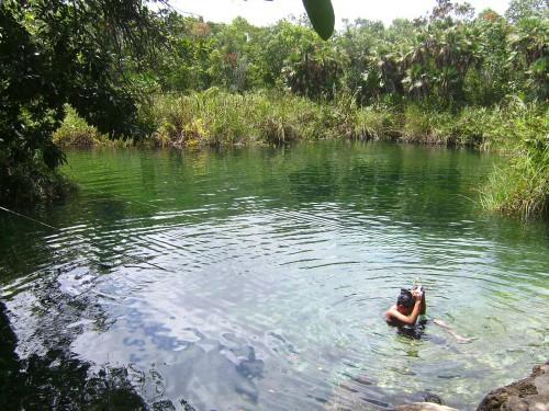 Haciendo snorkel en el Cenote Cristal de la Riviera Maya