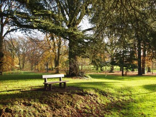 Parque de Caldicot