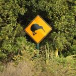 Señal de precaución kiwis (en la carretera) @3viajes