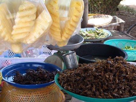 Puesto de insectos en la ruta Phnom Penh - Angkor @3viajes