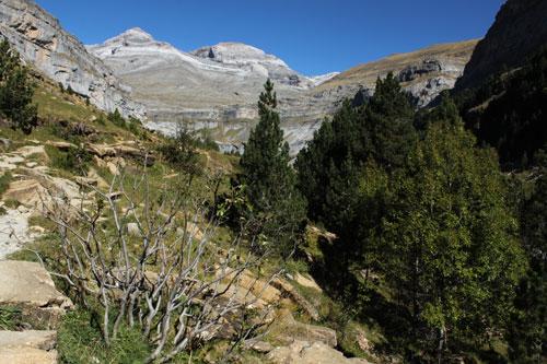 Parque Natural de Ordesa (Pirineo Aragonés)