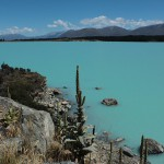 Agua turquesa en los Lagos Pukani de Nueva Zelanda