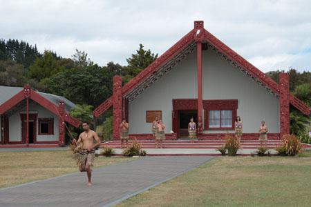 Ceremonia de bienvenida maorí en Te Puia
