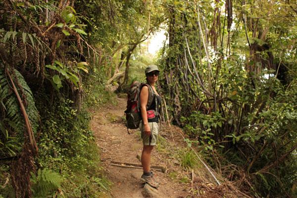 Caminos por la costa de Abel Tasman @3viajes