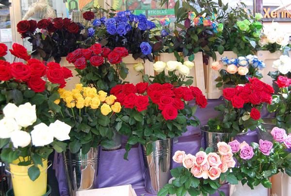Rosas en Sant Jordi, puesto de La Rambla de Barcelona