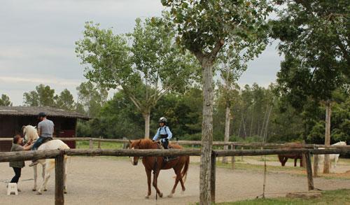 Clases de equitación en Can Sort