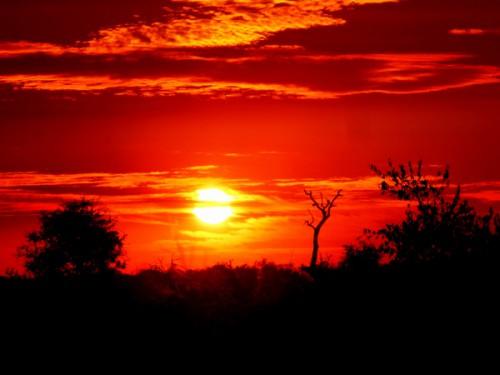 Puesta de sol en el Parque Kruger