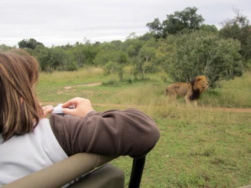 De safari por el Parque Kruger