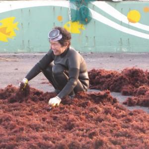 Abuela buceadora de la isla de Jeju en Corea del Sur