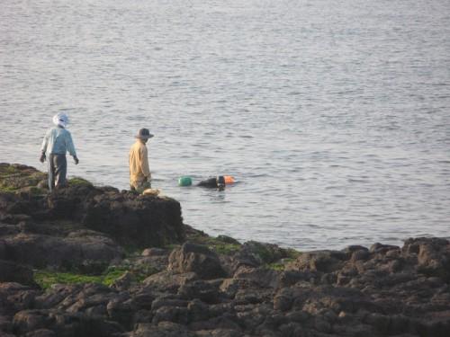 Abuela buceadora de Jeju island buceando