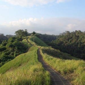 Camino por Ubud en Bali
