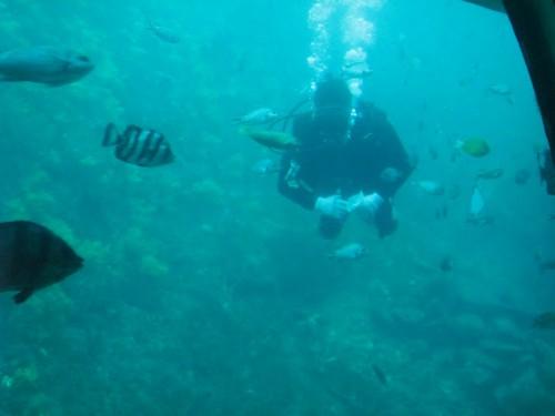 El submarinista de Jeju