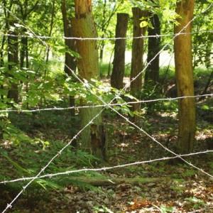 Visita al Campo de Concentración de Amersfoort