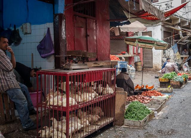 Galinhas caipiras para venda nos souks de Casablanca