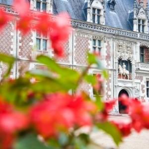 Castillo de Blois, Loira