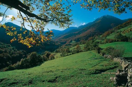 Primavera en Asturias @AsturiasTurismo