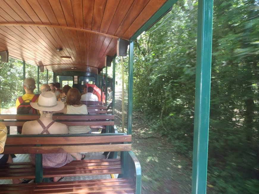Tren hacia las Gargantas de Diablo de Iguazú