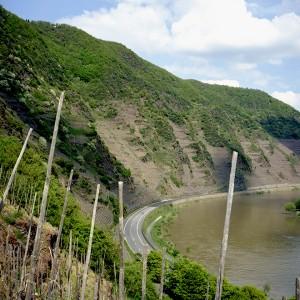 Calmont, el viñedo más escarpado de Europa