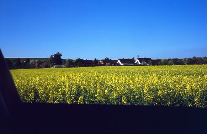 Paisajes de Renania-Palatinado