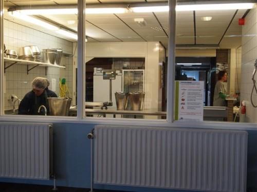 Centro de Rehabilitación de Focas de Pieterburen