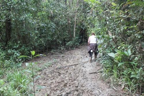 Mucho barro en el trecking por Kinabatangan