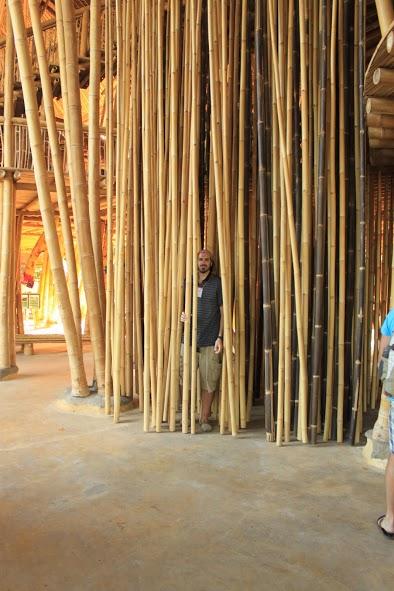 Yo entre bambú