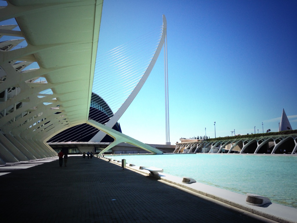 Visita al Oceanogràfic en Valencia